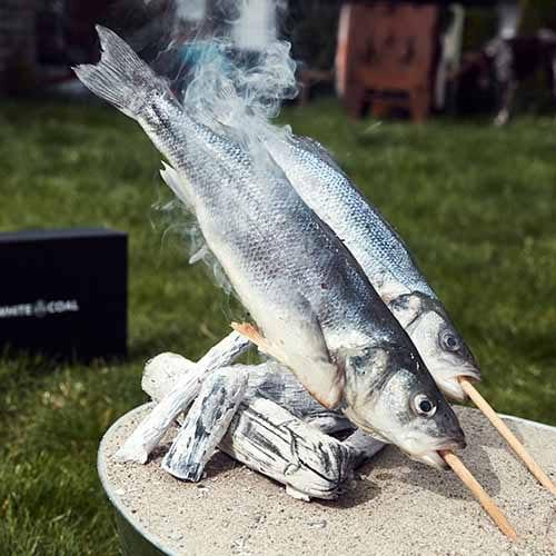Stockfisch garen über WHITE COAL Binchotan Holzkohle