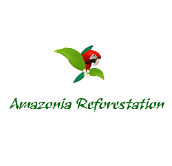 Amazonia Reforestation - Bäume pflanzen mit McBrikett