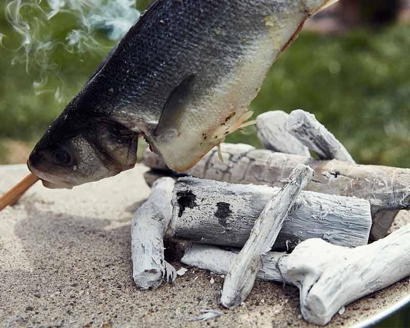 Mit der Binchotan WHITE COAL Holzkohle einen Stockfisch garen