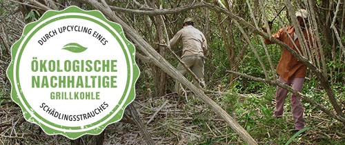 Ökologisch nachhaltige Holzkohle aus Upcycling - MARABU aus Kuba